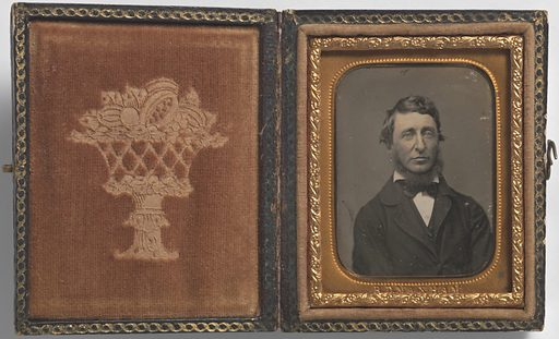 Henry David Thoreau. Sitter: Henry David Thoreau, 12 Jul 1817 – 6 May 1862. Date: 1850s. Record ID: npg_NPG.72.119.