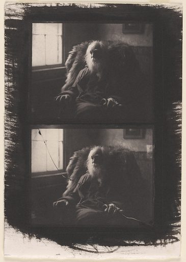Walt Whitman. Sitter: Walt Whitman, 31 May 1819 – 26 Mar 1892. Date: 1890s. Record ID: npg_NPG.79.70.