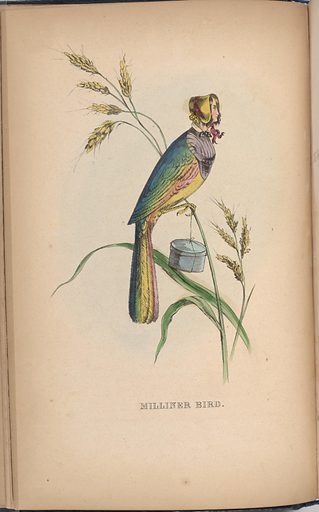 Milliner Bird. Sitter: Minnie Doyle. Date: 1850s. Record ID: npg_S_NPG.2001.58.3.