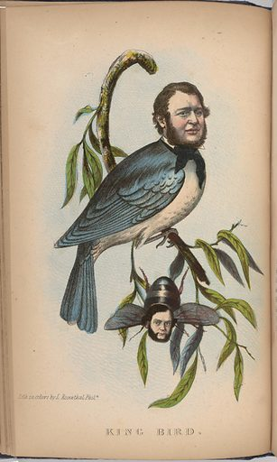 King Bird. Sitters: Robert P. King, 3 Apr 1815 – 27 Sep 1868; Alexander Baird. Date: 1850s. Record ID: npg_S_NPG.2001.58.21.