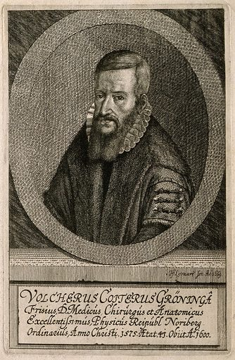 Volcher Coiter. Etching by J F Leonart, 1669, after N Neufchatel, 1575. Created 1669. Volcher Coïter (1534–). Contributors: N Neufchatel; J F Leonart. Work ID: prhvqg9x.