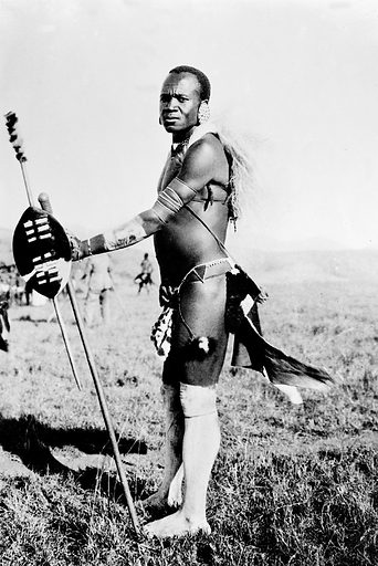 Zulu male ready for the wedding dance