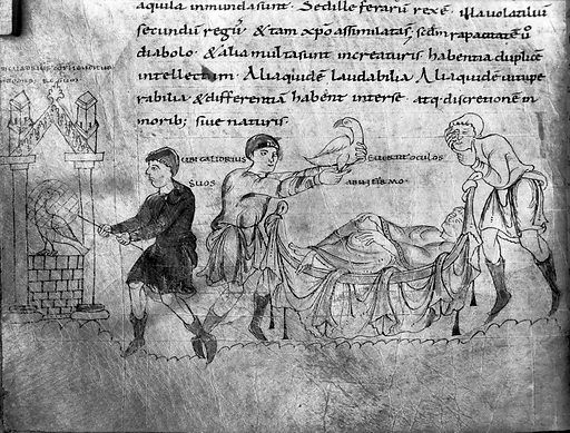 Capturing the Caladrius, and its use in sickness…. Capturing the Caladrius, and its use in sickness, as an omen, for recovery, or death. Work ID: hbr6tgfq.