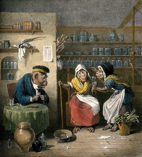 Interior of a phlebotomist's shop with anthropomorphic participants. Coloured lithograph by JD Harding after E Bristowe. Human behaviour – Animal models. Phlebotomy. Physicians. Patients. Contributors: Edmund Bristow (1787–1876); James Duffield Harding (1798–1863). Work ID: kk82hmvp.