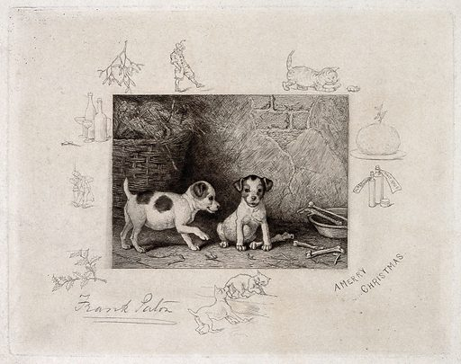 Two puppies are playing next to their bowl; vignettes show christmas paraphernalia, eg mistletoe. Etching by F Paton. Contributors: Frank Paton (1856–1909). Work ID: fjspc8kd.