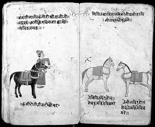 Hindi Manuscript 191, fols 69 verso 70 recto. Nakula, Asvacikitsa. Work ID: vq4fp6fp.