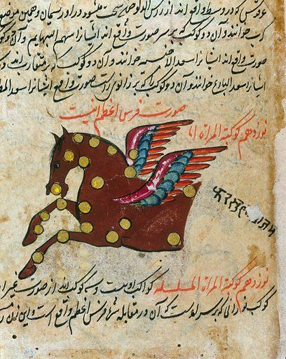 Detail. Constellation of Pegasus (horse) from Persian Manuscript 373