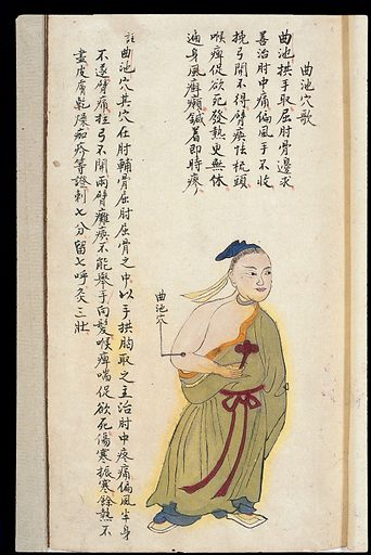 C19 Chinese MS moxibustion point chart: Quchi. Acu-moxa point chart, showing the quchi (Pool at the Crook) point, from Chuanwu lingji lu (Record of Sovereign Teachings), by Zhang Youheng, a treatise on acu-moxa in two volumes. This work survives only in a manuscript draft, completed in 1869 (8th year of the Tongzhi reign period of the Qing dynasty). It is illustrated with 84 charts, finely executed in colour. Chinese Medicine. TCM. Work ID: wawjxfhr.