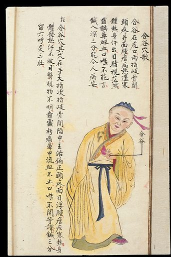 C19 Chinese MS moxibustion point chart: Hegu. Acu-moxa point chart, showing the hegu (Joining the Valley) point, from Chuanwu lingji lu (Record of Sovereign Teachings), by Zhang Youheng, a treatise on acu-moxa in two volumes. This work survives only in a manuscript draft, completed in 1869 (8th year of the Tongzhi reign period of the Qing dynasty). It is illustrated with 84 charts, finely executed in colour. Chinese Medicine. TCM. Work ID: ycapgcsg.
