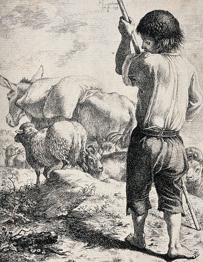 A young boy with a staff is tending to a flock of sheep and a donkey carries a load on its back. Etching by Francesco Londonio. Created 1700–1799. Contributors: Francesco Londonio (1723–1783). Work ID: cg2s87uw.