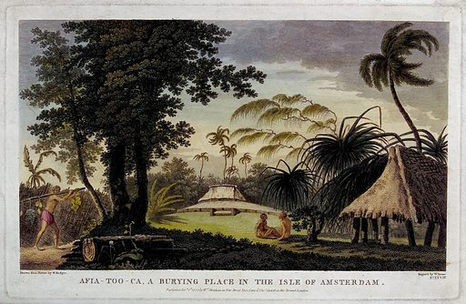 Afia-Too-Ca, a burying place in the Isle of Amsterdam, with three people, several huts and surrounding palm trees. Coloured line engraving by W Byrne, c 1777, after W Hodges. Created 1 February 1777. Botany – History (- 18th century). Plants. Tropical plants. Palms. Fruit. Huts. Cemeteries. Pacific Islanders. Oceania. Islands of the Pacific. Contributors: William Hodges (1744–1797); William Byrne (1743–1805); James Cook (1728–1779). Work ID: w6uzxcmw.