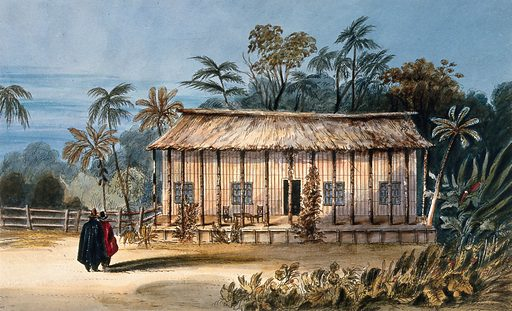 Colombia: a cottage built of bamboo. Coloured etching by C Empson, 1836. Contributors: Charles Empson. Work ID: kbn33cxd.