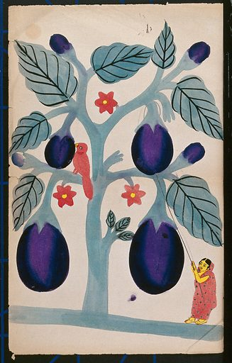 A woman pulling giant aubergines from a tree. Watercolour. Eggplant. Birds. Work ID: buu2vm47.