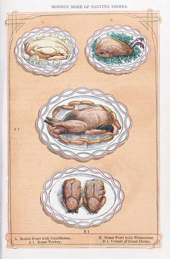 The book of household management by Mrs Beeton. The book of household management. A selction of poultry dishes. Domestic. Cookery. Work ID: u8nxp8mq.