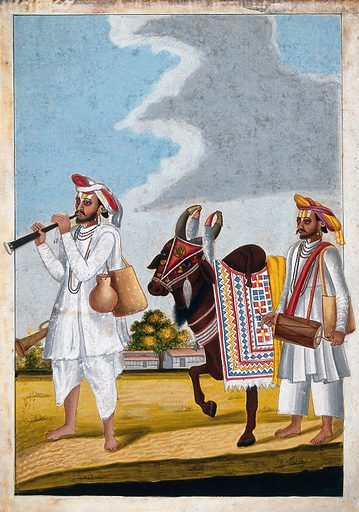 Two Hindu musicians and a highly decorated cow with the symbol of Hanuman painted on its forehead. Gouache drawing. The symbol of Hanumān painted in gold on the cow's forehead indicates that these entertainers regard him as their patron. Hanumān is reguared as the protector and patron of wandering acrobats and wrestlers. Cows. Musical instruments – India. Costume – India. Body marking – Religious aspects – Hinduism. Entertainers. Music. Hindu symbolism. Caste – India. Ethnology. Hanumān (Hindu deity). Work ID: bw8k9ab7.