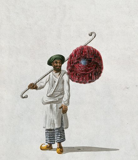 An Indian man holding a fan (?). Gouache painting by an Indian artist. Created between 1800 and 1899?. Work ID: dsvsxaza.
