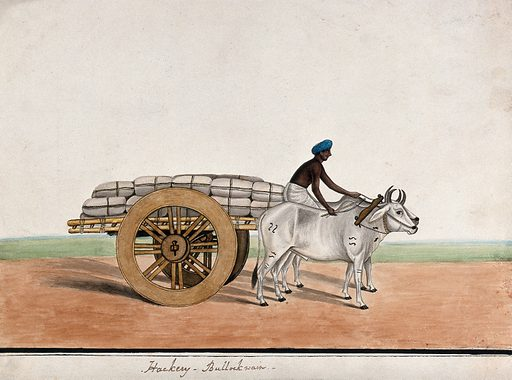 A man driving a bullock cart laden with sacks. Watercolour by an Indian artist. Created between 1800 and 1899?. Work ID: t8sy3mau.