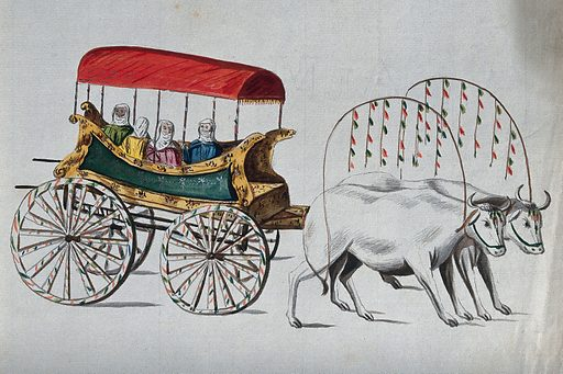 Four Turkish women being carried in an ox-cart. Watercolour. Ox driving. Carriages and carts. Turkey. Work ID: jbry8rm4.