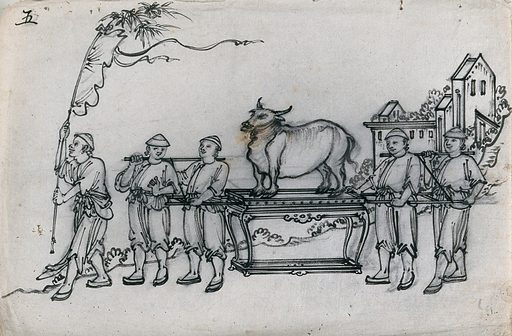 A Chinese procession in honour of the god of spring, incorporating a sacred buffalo. Ink drawing, China, 18 – ?. Created 1800–1899. Buddhism. Work ID: mn3mqyb4.