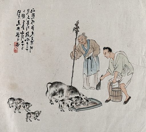 Two Chinese farmers feed a family of pigs. Gouache painting by a Chinese artist, ca 1850. Created 1850. Work ID: aqfctkb5.