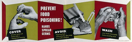 Prevention of food poisoning. Colour lithograph, ca 1960. Work ID: sdv852a4.