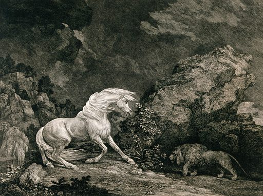 A horse frightened by a lion. Etching by G Stubbs, ca 1800. Created Sept: 25 1777. Horses. Contributors: George Stubbs (1724–1806); George Stubbs (1724–1806). Work ID: xmrn8f2e.