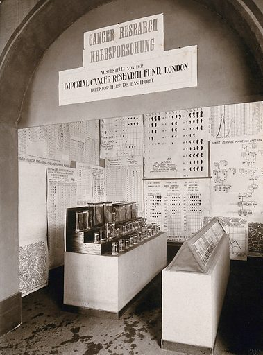 International Hygiene Exhibition, Dresden, 1911: the Imperial Cancer Research Fund, London, exhibit, displaying laboratory specimens and charts. Photograph by Martin Herzfeld, 1911. Created 1911. Work ID: wxvdf2mf.