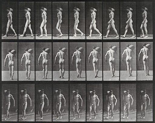 A man bearing load on shoulder. Collotype after Eadweard Muybridge, 1887. Created 1887. Contributors: Eadweard Muybridge (1830–1904); University of Pennsylvania. Work ID: smdxw7p8.