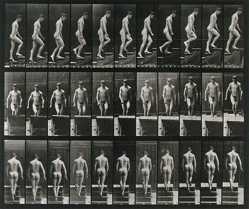 A man walking up stairs. Collotype after Eadweard Muybridge, 1887. Created 1887. Contributors: Eadweard Muybridge (1830–1904); University of Pennsylvania. Work ID: cmbvccw3.