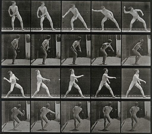A man throwing a ball. Collotype after Eadweard Muybridge, 1887. Created 1887. Contributors: Eadweard Muybridge (1830–1904); University of Pennsylvania. Work ID: p5n977gt.