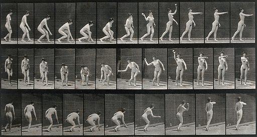 A woman picking up a ball and throwing. Collotype after Eadweard Muybridge, 1887. Created 1887. Contributors: Eadweard Muybridge (1830–1904); University of Pennsylvania. Work ID: xj9jgs9a.