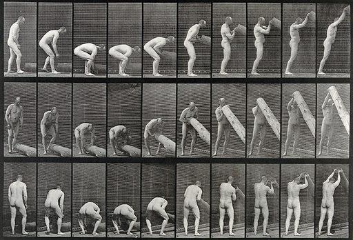 A man lifting a trunk. Collotype after Eadweard Muybridge, 1887. Created 1887. Contributors: Eadweard Muybridge (1830–1904); University of Pennsylvania. Work ID: ee7cvfqg.