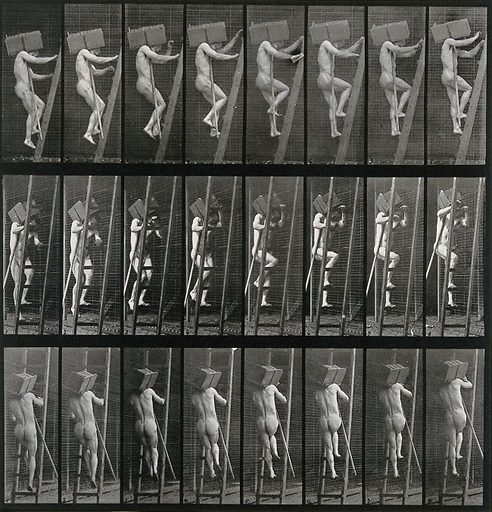 A man climbing up a ladder with a heavy load on his right shoulder. Collotype after Eadweard Muybridge, 1887. Created 1887. Contributors: Eadweard Muybridge (1830–1904); University of Pennsylvania. Work ID: t32uqr6w.