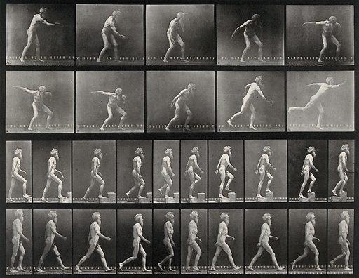 E Muybridge throwing a disc, ascending stairs, and walking. Photogravure after Eadweard Muybridge, 1887. Sequence. Photograph. Contributors: Eadweard Muybridge; University of Pennsylvania. Work ID: uuvarx5y.