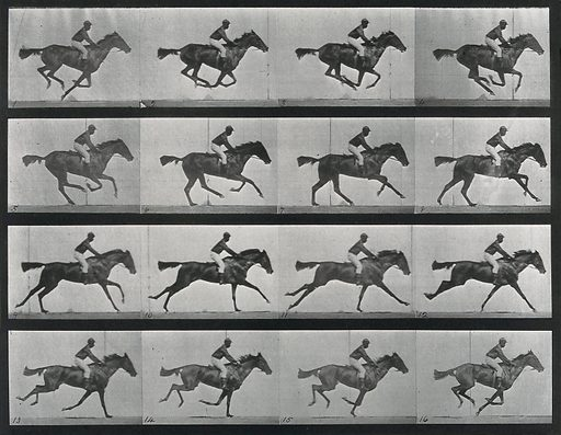 A galloping horse and rider. Sequence. Photograph. Contributors: Eadweard Muybridge; University of Pennsylvania. Work ID: aph96644.