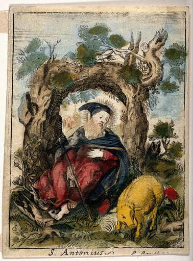 Saint Antony Abbot, in the wilderness, with a pig. Coloured engraving by P Bouttats. Created between 1600 and 1699/between 1700 and 1799?. Swine – Religious aspects – Christianity. Anthony, of Egypt, Saint (approximately 250–355 or 356). Contributors: P Bouttats. Work ID: epgv9a67.