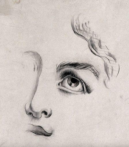 A fragmentary drawing of a face. Pencil drawing. Work ID: vs4dd4bu.