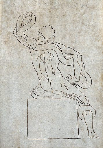 Laocoön. Pen and ink drawing after G Audran. Contributors: Gérard Audran. Work ID: sjk3ffru.