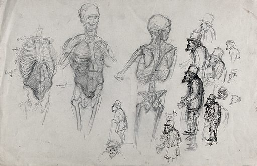 A skeleton seen in three views and sixteen sketches of a bearded old man with top hat. Pencil drawing. Work ID: nqnpb2sa.