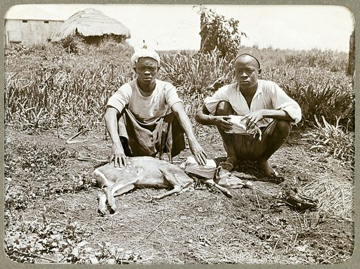 Sleeping Sickness Commission photos. Notebook and photograph album complied while serving on Sleeping Sickness Commission, Uganda and Nyasaland, 1908 – 1913. Work ID: nwxgjp33.