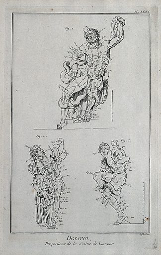 Laocoon and his sons. Engraving by Defehrt after G Audran. Contributors: Gérard Audran. Work ID: geufuy3b.
