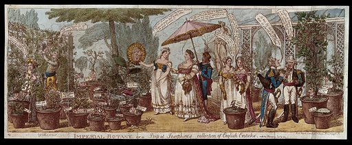 """The Empress Josephine walking with her retinue in a garden of labelled potted plants which include animated likenesses of prominent figures. Coloured etching by C Williams, 1814. A sunflower labelled """"Royal sunflower"""" contains the face of the Prince Regent. RB Sheridan is a bunch of grapes. On the right are three pots: a large """"Wellington laurel"""" grows from a wreath on the profile head of Wellington. By it is a mushroom labelled """"C-k-r"""" (Croker), and an oak stump on which is an acorn with the face of Whitbread. Other plants are labelled """"Laureat bay"""" (Robert Southey) and """"Chaste flower"""". Created 1 March 1814. Empress Josephine, consort of Napoleon I, Emperor of the French (1763–1814). Contributors: Charles Williams (active 1797–1830). Work ID: t344msn7."""