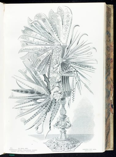 Illustration of sportsmans knife, containing eighty blades. Work ID: xb44vdru.