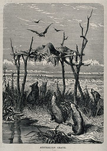 Australian grave: a dead body placed on an elevated wooden structure; dingos seated below. Engraving, ca 1860. Created 1860?. Work ID: jq3dtwdd.