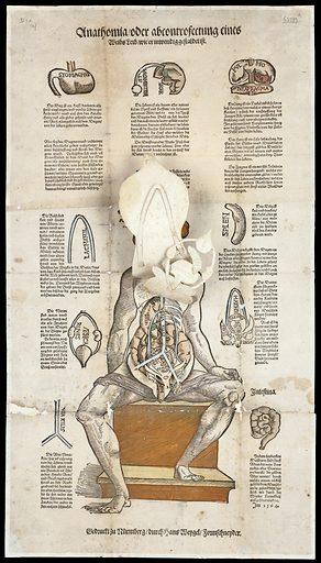 Anatomical fugitive sheets. Anathomia oder abcontrofettung eines Weibs leib, wie er inwendig gestaldet ist. Work ID: jmxtx9bw.