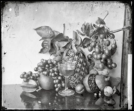 Still life of fruit, Hong Kong. Photograph by John Thomson, 1868/1871. Contributors: J Thomson. Work ID: uk8dyvqk.