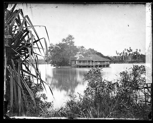 Annam, Cochin China [Vietnam]. Photograph by John Thomson, 1867. Contributors: J Thomson. Work ID: pepr6ram.