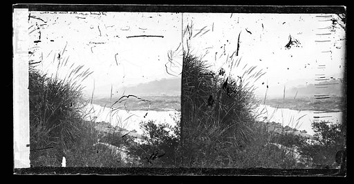 River reeds China Sunset on the Min river. Fukien province, China. Photograph by John Thomson, 1867. Contributors: J Thomson. Work ID: ypyjq4w9.