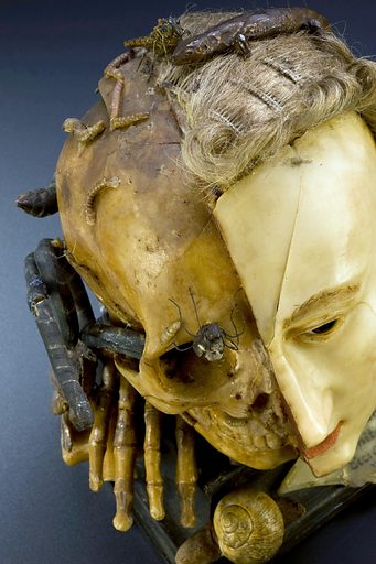 Wax model of a female head depicting life and death, European, possibly 18th century. With plaque giving quote from Bible; Ecclesiastes, Chapter 1, verse 2; Vanitas vanitates et omnia vanitas. Contributors: Science Museum, London. Work ID: bcjqagg6.