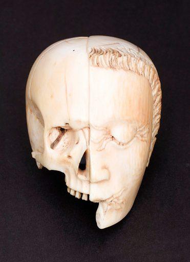 Ivory model of a half head, half skull. Front view. Black background. Contributors: Science Museum, London. Work ID: gxhekkya.